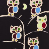 Blooming Owls between Clear Night.